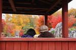 20111105花の都公園3.jpg